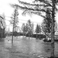 Зырянка, 1937 год, Зырянка