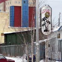 Oyunskogo St., Мирный