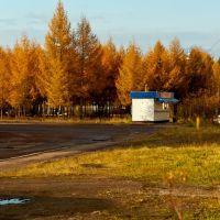 Якутия г. Нерюнгри Сентябрь 2011, Нерюнгри
