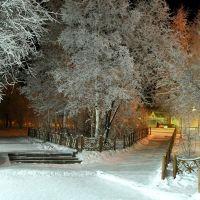 Зимний Нерюнгри, Нерюнгри