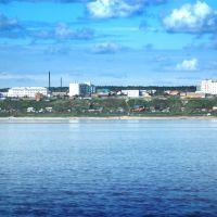 Вид на город Покровск (A view of the city Pokrovsk), Покровск