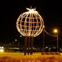 Стерхи на глобусе, Салехард