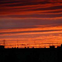 Крыши, антенны, коты......, Муравленко