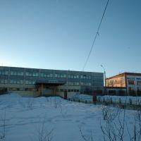 Школа №5, Муравленко