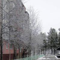 Муравленко начало зимы 2012, Муравленко