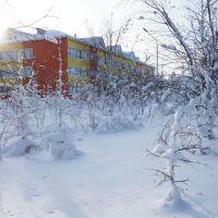 Муравленко февраль 2013 Школа №1, Муравленко