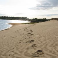 Sands, Губкинский