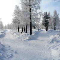Иней (городской парк)., Надым