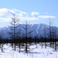 март тундра, Анбэцу