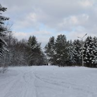 Зимний парк, Долинск