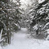 зимняя дорога на Солнечную поляну, Корсаков