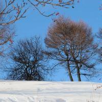 зимний солнечный день, Корсаков