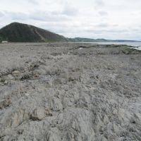 Здесь до землетрясения 2007 года было морское дно, Невельск
