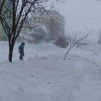 Зима в Охе, Оха