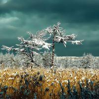 Первый снег 2005г, Углегорск
