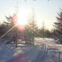 ON skis На лыжне, Углегорск