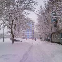 Двор ул. Бульвар Дружбы 2010, Холмск