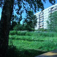 Новоуральск, В одном из дворов (ул. Победы), Новоуральск