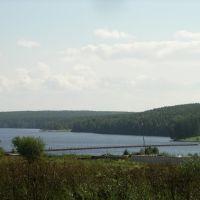 Вид на пруд (2007), Лесной