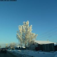 2011/01/15 10:36, Арамиль