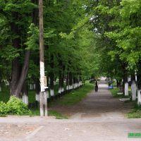 Артёмовский сквер по улице Ленина (1), Артемовский