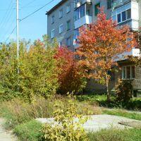 Осень в Березовском., Березовский
