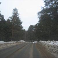 В лес, Березовский