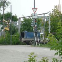 Первый светофор в микрорайоне, Богданович