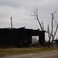 сгоревший дом  в старой Синячихе, Верхняя Синячиха