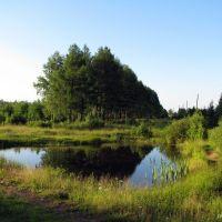 Озерцо у линии, Верхняя Тура
