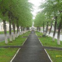 аллея, Волчанск