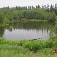мини-водохранилище, Волчанск