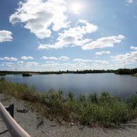 Придорожный пруд, Воронцовка