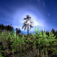 Белые ночи Краснотурьинска, Воронцовка