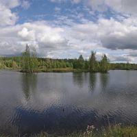 Воронцовское озерцо, Воронцовка