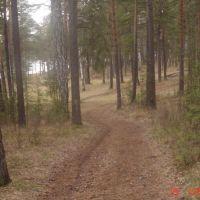 Тропа здоровья..., Дегтярск