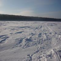 Замерший пруд, Дегтярск