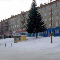 улица Калинина дом  60, Дегтярск