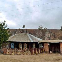 Зыряновский. Дом с кедром., Зыряновский