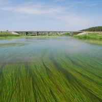 река Нейва, автомобильный мост в деревне Устьянчики, Зыряновский