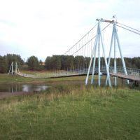 Устьянчики. Подвесной мост., Зыряновский