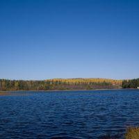 Озерцо у посёлка Зюзельский, Зюзельский