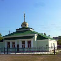 Зюзельский. Мечеть., Зюзельский