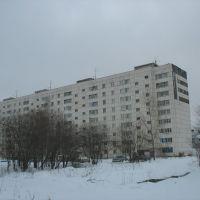 Жилой дом по ул. Королёва 26, Изумруд