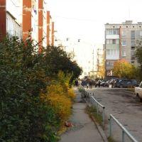 осень 55 дом, Ирбит