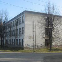згоревшее здание техникума, Ис