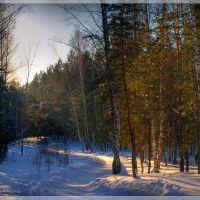 Зимняя тропинка, 2011, Каменск-Уральский