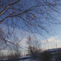 """Ракета """"Тайга-2"""". Посадка на дерево (после второго полета), Карпинск"""