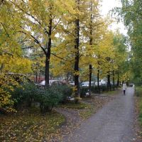 Осень, Краснотурьинск