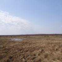 Гор. пруд, Красноуральск